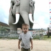 ryan-and-the-elephant-at-the-shore