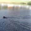 senna-swimming-9-5